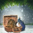 Abstract winter and Xmas backgrounds with funny animals   — Foto de Stock