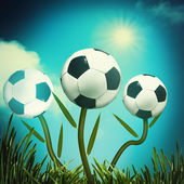 Funny football and soccer backgrounds for your design — Stock Photo