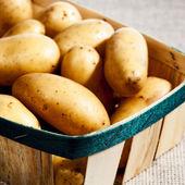 Potatoe in the basket — Stock Photo