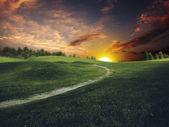 Mystical sunset over summer green hills — Stock Photo