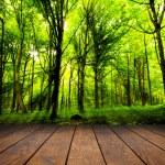 Wood textured — Stock Photo #14765973