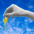 Stock Photo: Key in a palm over white background