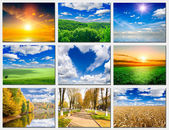 Příroda — Stock fotografie