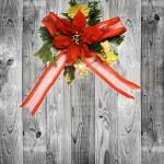 Christmas — Stock Photo #18891871