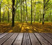 Drewno teksturowanej tło we wnętrzu pokoju na tle lasu — Zdjęcie stockowe
