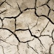 Cracked soil after flood — Stock Photo