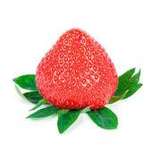 赤いいちご — ストック写真