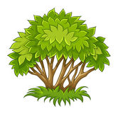 Bush with green leaf — Stock Vector