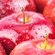 Macro of fresh red wet apples - Stock Photo