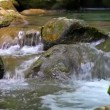 Scenic view of small waterfall in summer forest — Stockvideo