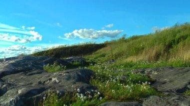 Windy hill — Stockvideo