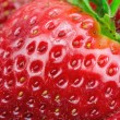 Macro view of strawberry — Stock Photo