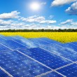 Solar panels in rape field — Foto Stock