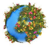 Mini Earth planet — Stock Photo