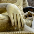 Buddha's hand — Stock Photo