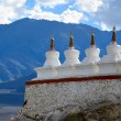 Buddhist chortens — Stock Photo #29196319