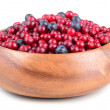 Autumn berrys — Stock Photo