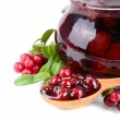 Cowberry jelly — Stock Photo