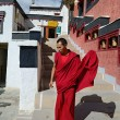 Tibetan Monk — Stock Photo