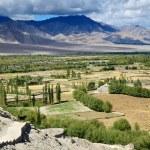 Himalayas valley — Stock Photo #32556473