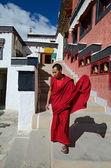 Tibetischer mönch — Stockfoto