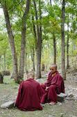 Jóvenes monjes tibetanos — Foto de Stock