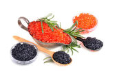 Black and red caviar — Stock Photo