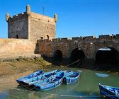 Essaouira limanda — Stok fotoğraf