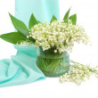 Lily of the valley — Stock Photo #4751341