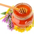 Jar with honey — Stock Photo #50373629