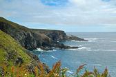 Costa de irlanda — Foto de Stock