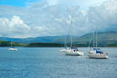Yachts in Bantry Bay — Stock Photo