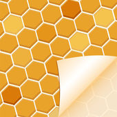 Abstract honey background — Stock Vector