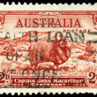AUSTRALI- CIRC1934 Merino Sheep — Stock Photo #15486601