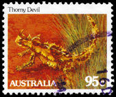 AUSTRALIA - CIRCA 1981 Thorny Devil — Stock Photo
