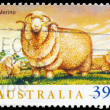AUSTRALI- CIRC1989 Merino — Stock Photo #15533949