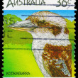 AUSTRALIA - CIRCA 1986 Kookaburra - Stock Photo
