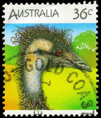 AUSTRALIA - CIRCA 1986 Emu — Stock Photo