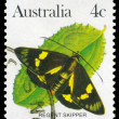 AUSTRALI- CIRC1983 Regent Skipper — Stock Photo #15567515