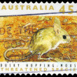 AUSTRALI- CIRC1992 Dusky Hopping Mouse — Stock Photo #16297001