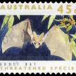 Stock Photo: AUSTRALI- CIRC1992 Ghost Bat