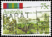 AUSTRALIA - CIRCA 1992 Kokoda Trail — Stock Photo