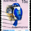 AUSTRALIA - CIRCA 1979 Forest Kingfisher — Stock Photo