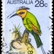 AUSTRALIA - CIRCA 1980 Rainbow Bird — Stock Photo #22959580