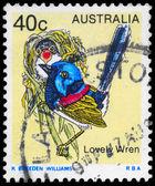 AUSTRALIA - CIRCA 1979 Lovely Wren — Stock Photo