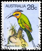 AUSTRALIA - CIRCA 1980 Rainbow Bird — Stock Photo