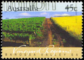 AUSTRALIA - CIRCA 1992 Barossa Valley — Stock Photo