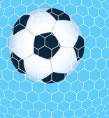 Ball in the net — Stock Vector