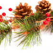 Foto Stock: Christmas decoration