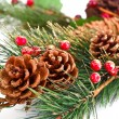 Christmas tree branch — Stockfoto